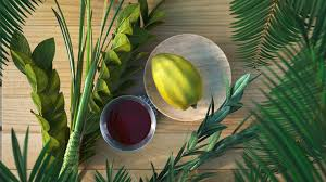 Sukkot -  Feast of Tabernacles